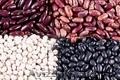 Vânzarea de fasole cu ridicata